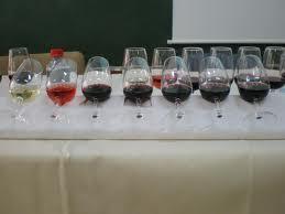 La Gran Cata de Vino